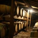 Dégustation de vins de Graves