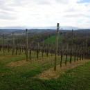 A la découverte du Béarn : Episode 1 – les vins du Jurançon
